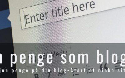 Hvordan tjener en blogger penge? (11 forskellige indtægtskilder)